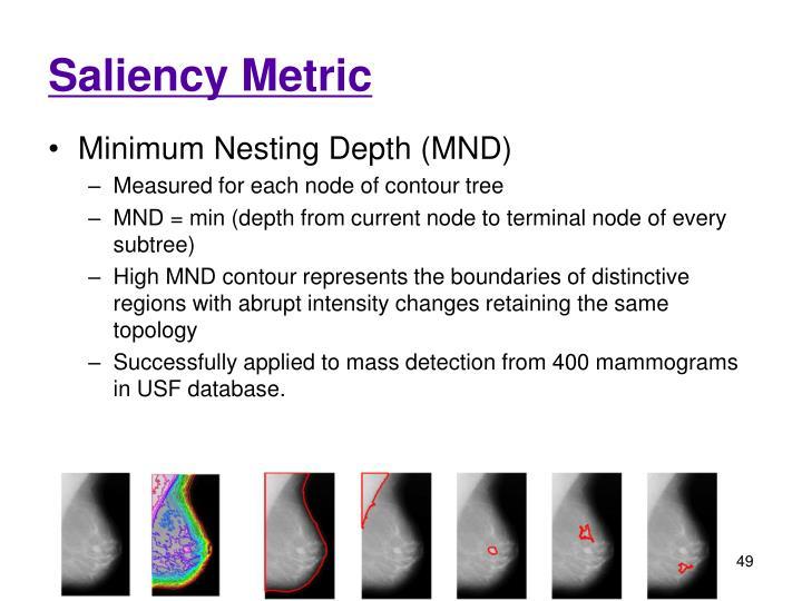 Saliency Metric