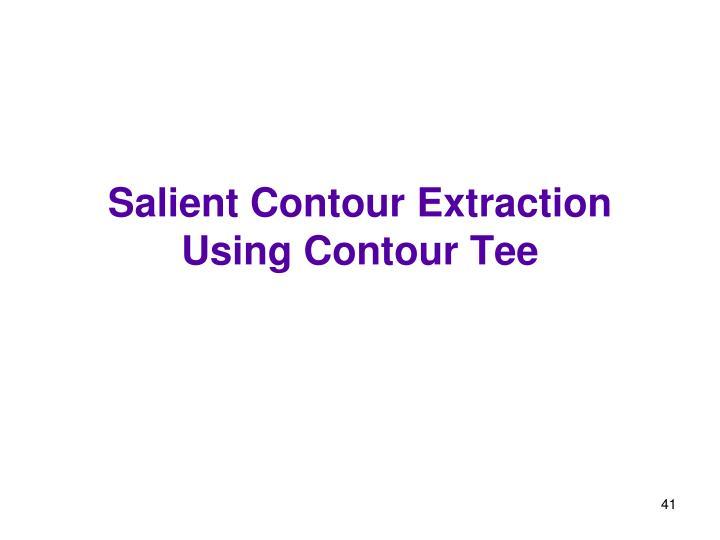 Salient Contour Extraction