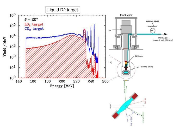 Liquid D2 target