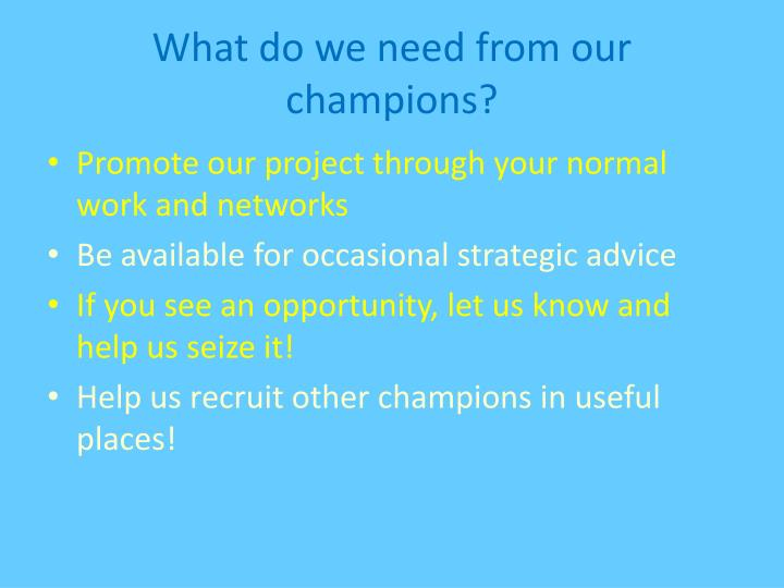 What do we need from our champions?