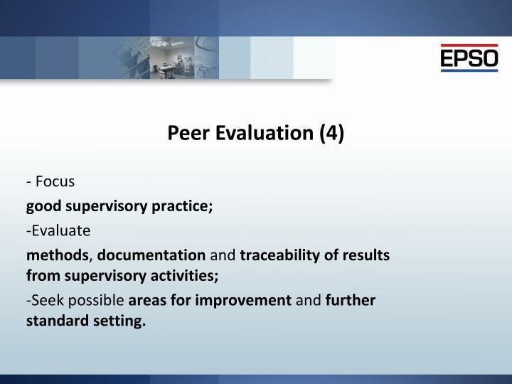 Peer Evaluation (4)