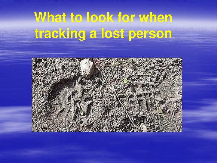 What to look for when tracking a lost person