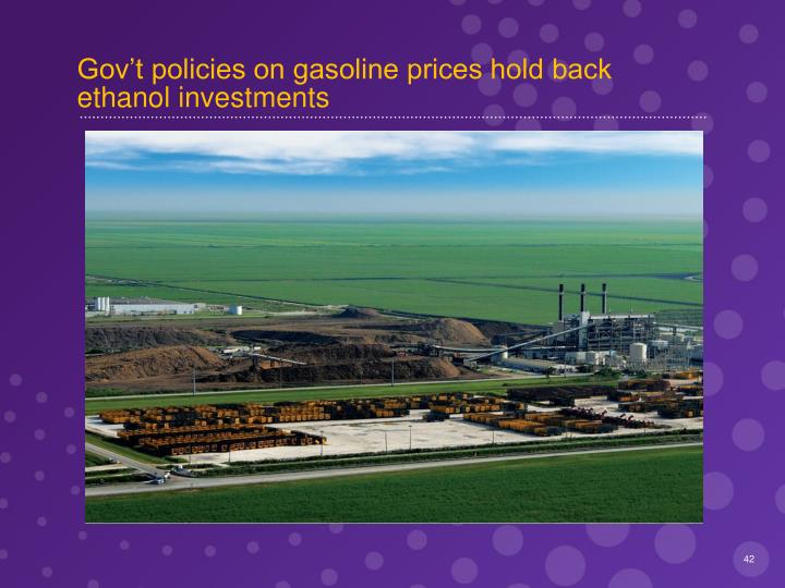 Gov't policies on gasoline prices hold back ethanol investments