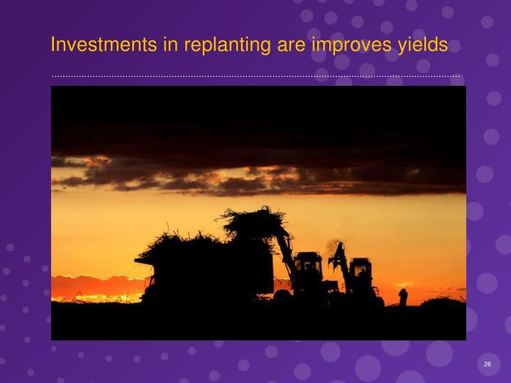 Investments in replanting are improves yields