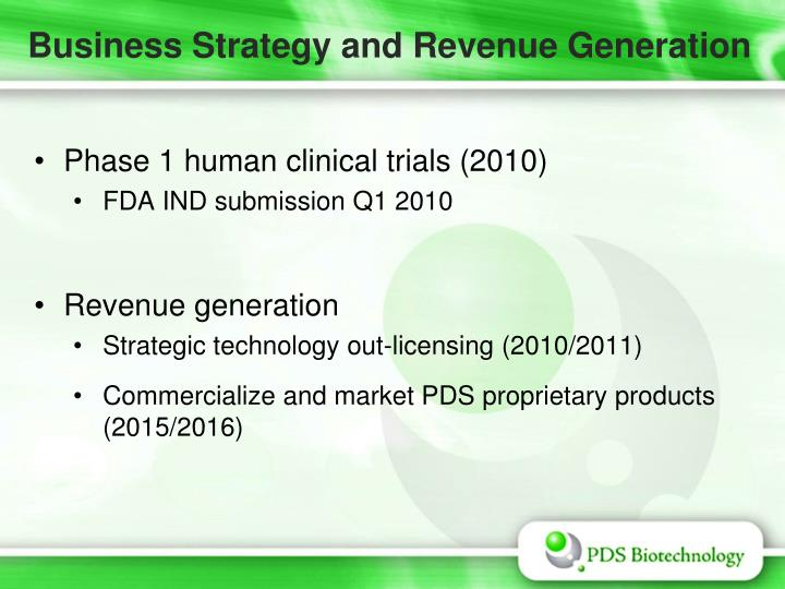 Business Strategy and Revenue Generation
