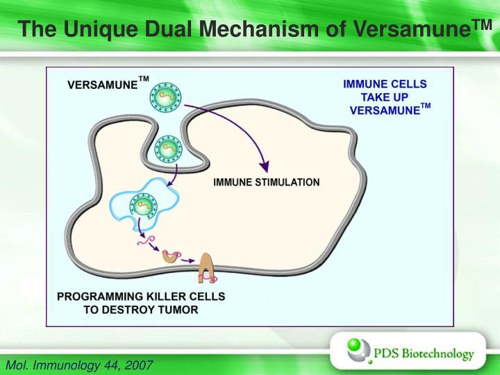 The Unique Dual Mechanism of Versamune