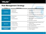 risk management strategy