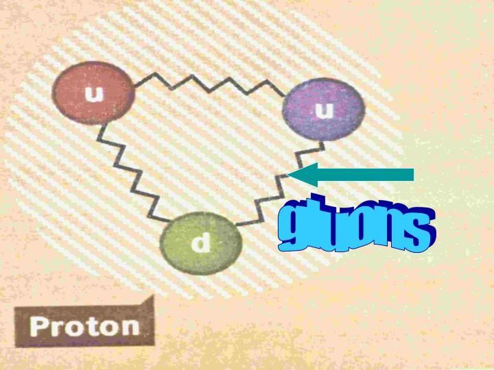 gluons