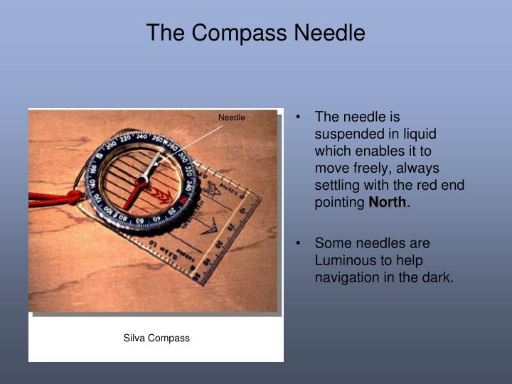 The Compass Needle