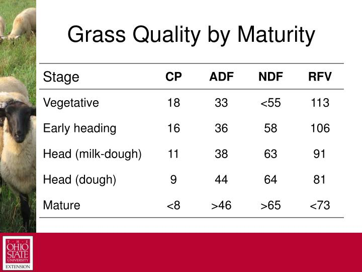 Grass Quality by Maturity