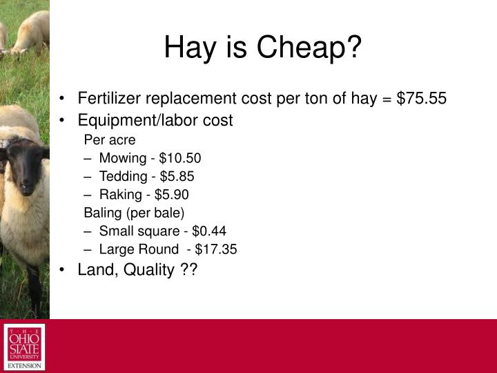 Hay is Cheap?