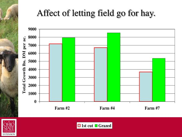 Affect of letting field go for hay.