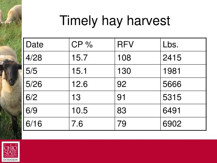 Timely hay harvest