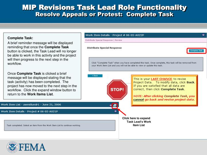 MIP Revisions Task Lead Role Functionality
