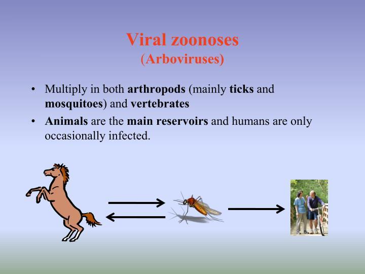 Viral zoonoses