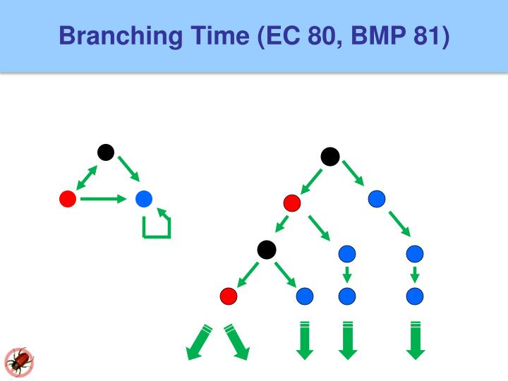 Branching Time (EC 80, BMP 81)