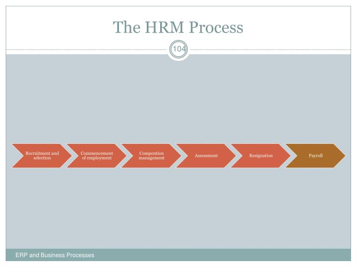The HRM Process