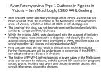 avian paramyxovirus type 1 outbreak in pigeons in victoria sam mccullough csiro aahl geelong