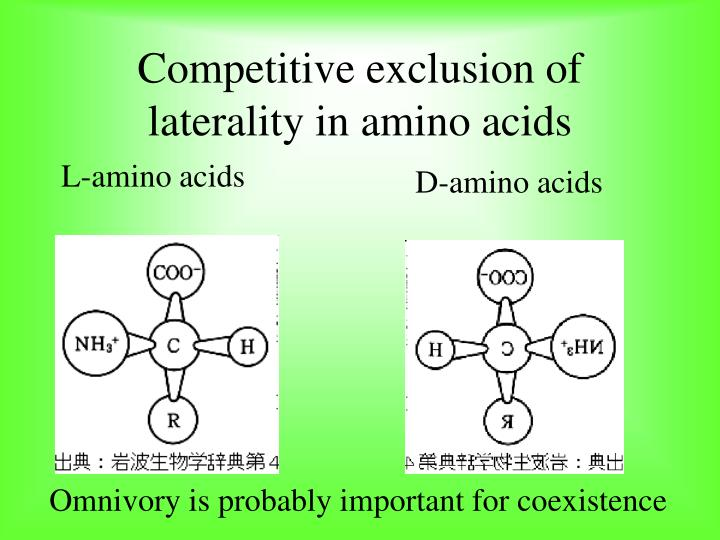 Competitive exclusion of laterality in amino acids