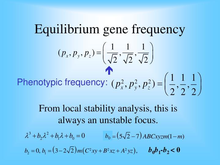 Equilibrium gene frequency