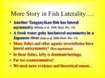 more story in fish laterality