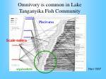 omnivory is common in lake tanganyika fish community