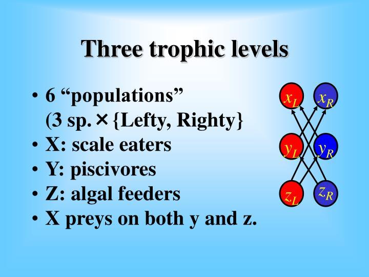 "6 ""populations"""