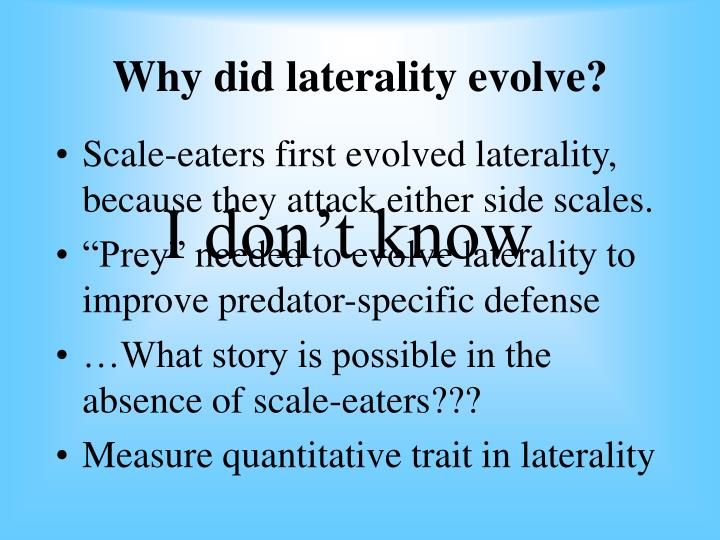 Why did laterality evolve?