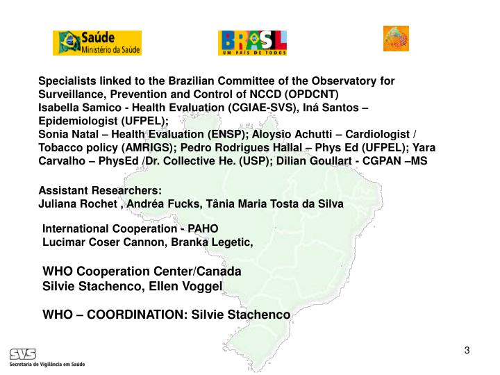 Specialists linked to the Brazilian Committee of the Observatory for Surveillance, Prevention and Control of NCCD (OPDCNT)