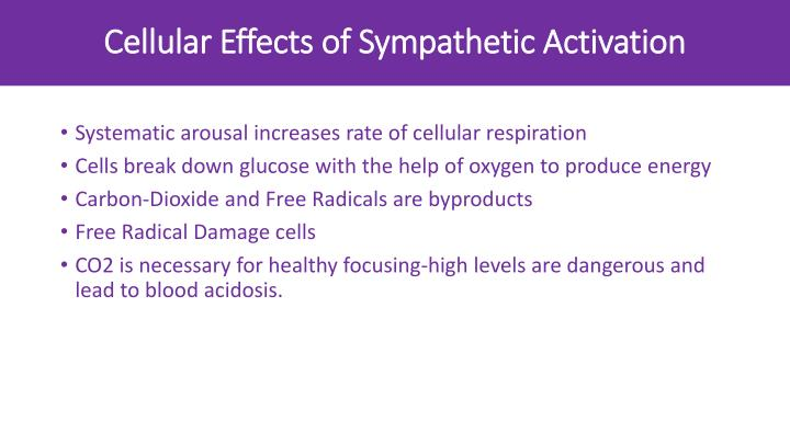 Cellular Effects of Sympathetic Activation