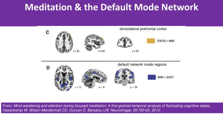 Meditation & the Default Mode Network