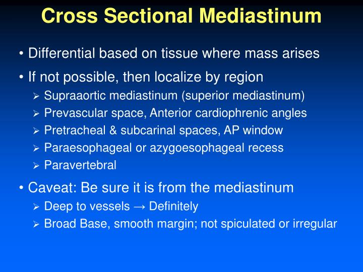 Cross Sectional Mediastinum