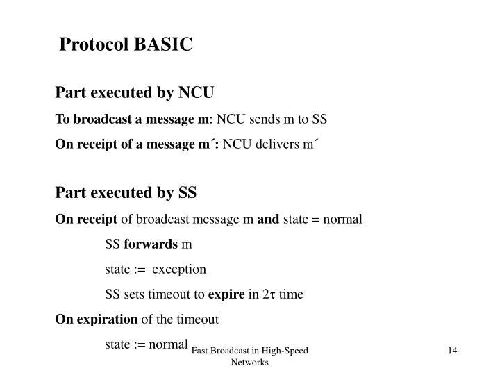Protocol BASIC