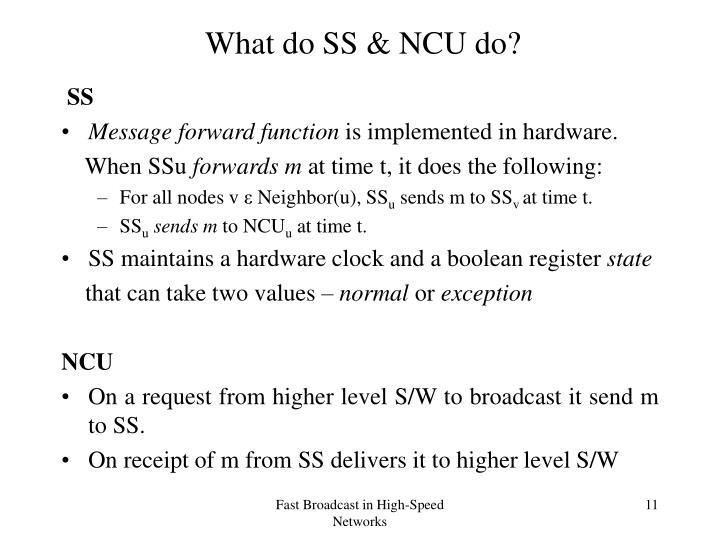 What do SS & NCU do?