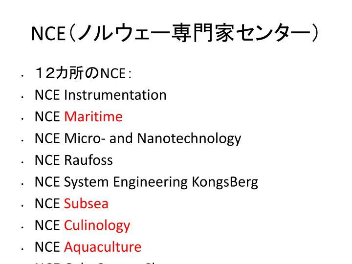 NCE(ノルウェー専門家センター)