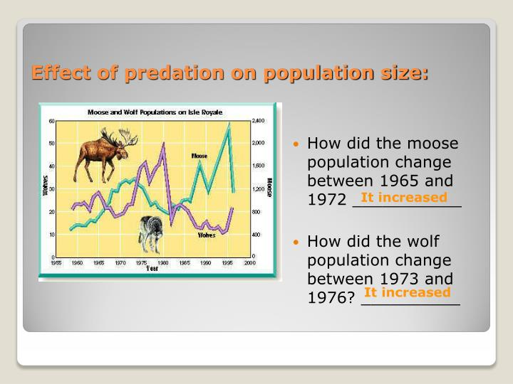 Effect of predation on population size: