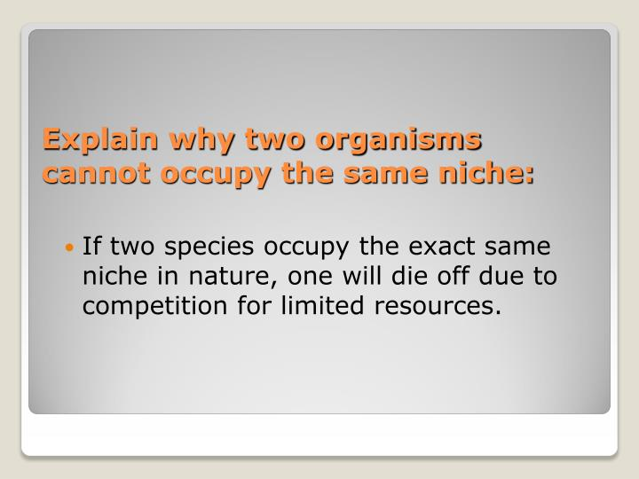 Explain why two organisms cannot occupy the same niche:
