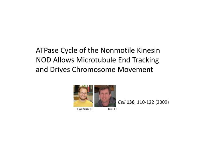 ATPase Cycle of the Nonmotile Kinesin