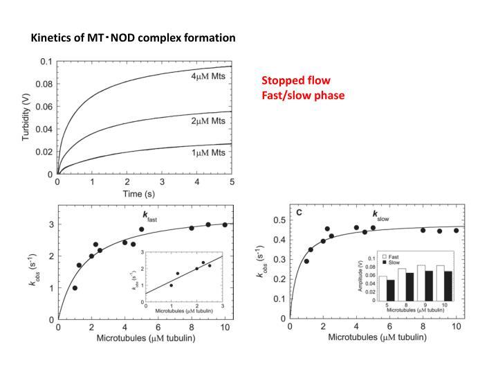 Kinetics of MT‧NOD complex formation