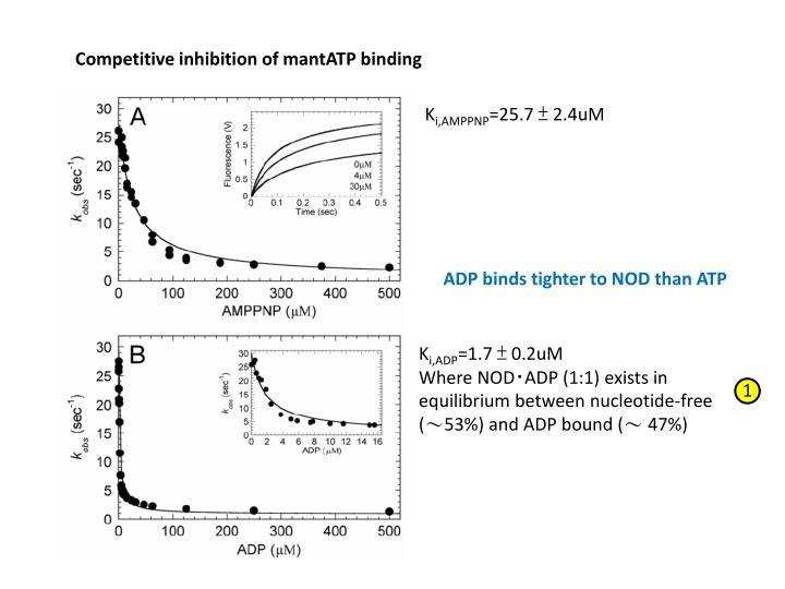 Competitive inhibition of mantATP binding