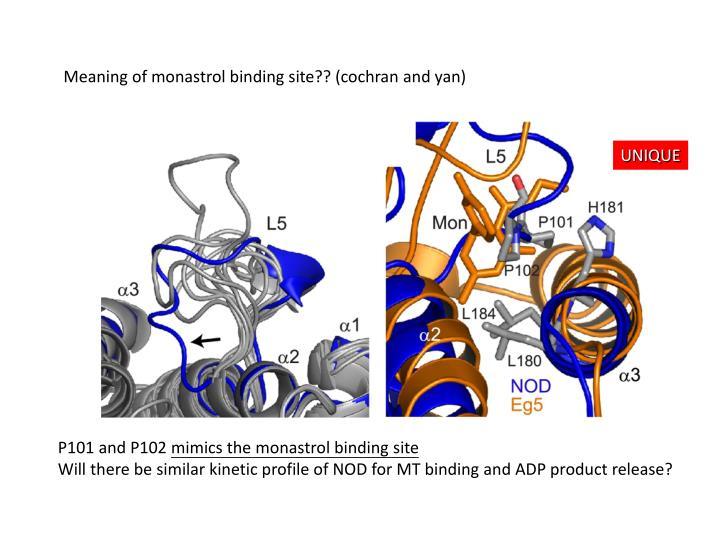 Meaning of monastrol binding site?? (cochran and yan)