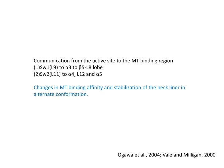 Communication from the active site to the MT binding region