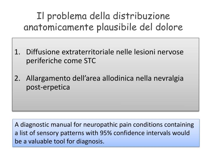 Il problema della distribuzione anatomicamente plausibile del dolore