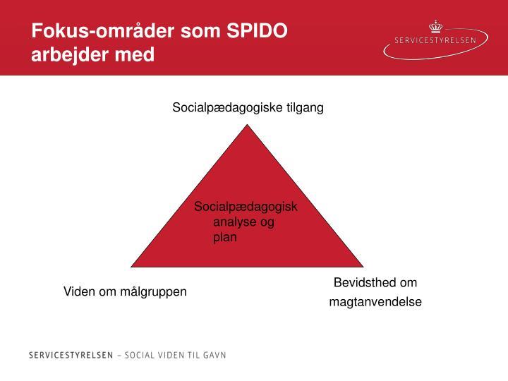 Fokus-områder som SPIDO arbejder med