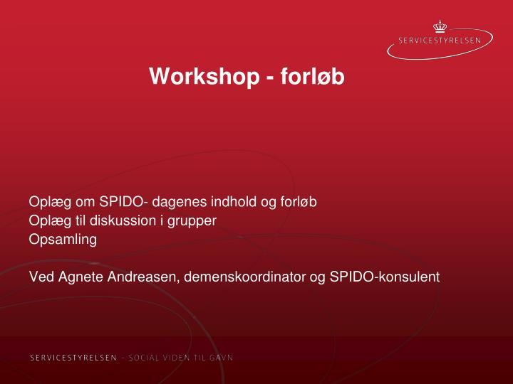 Workshop - forløb