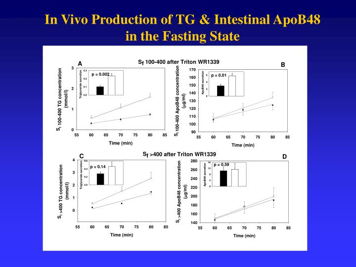 In Vivo Production of TG & Intestinal ApoB48