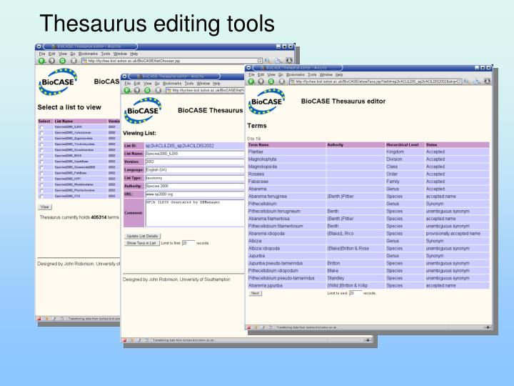 Thesaurus editing tools