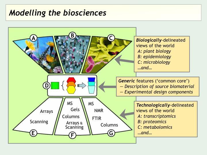 Modelling the biosciences
