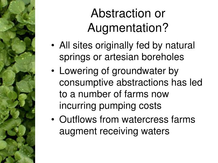 Abstraction or Augmentation?