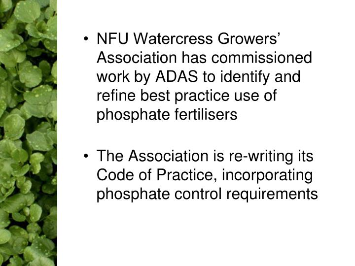 NFU Watercress Growers' Association has commissioned work by ADAS to identify and refine best practice use of phosphate fertilisers